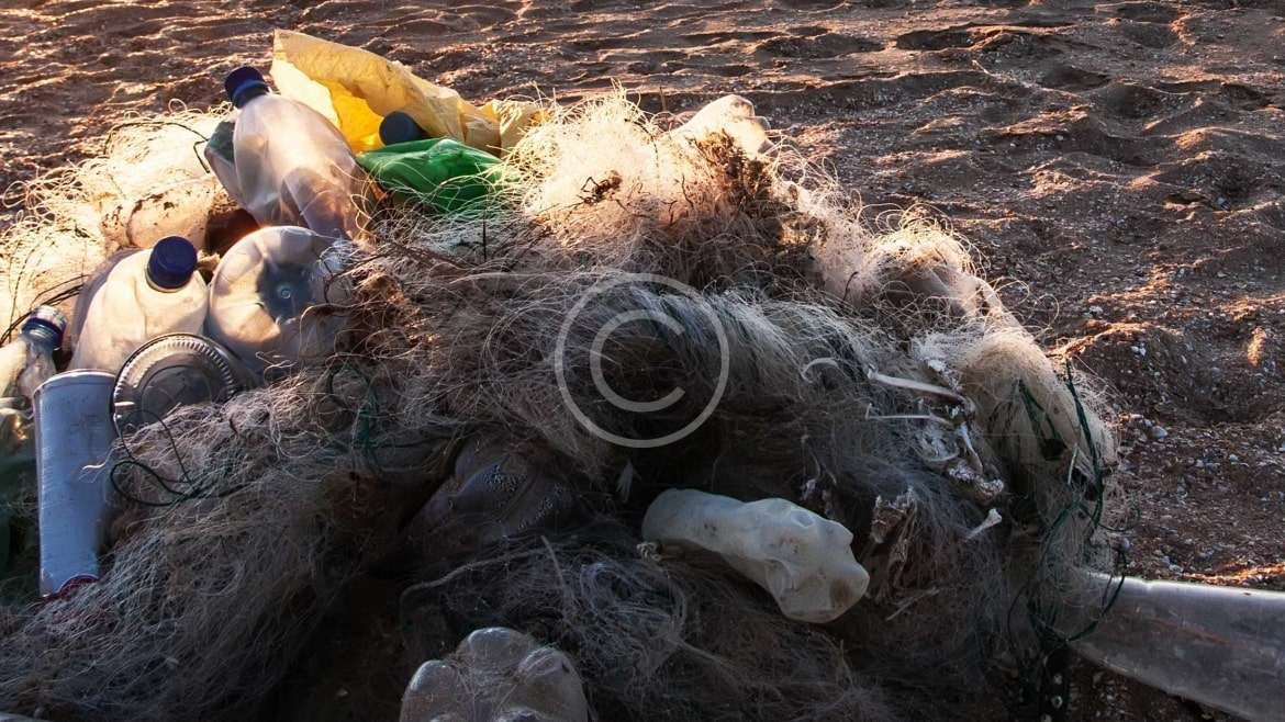 Pollution Alarm: Garbage is Killing the Environment